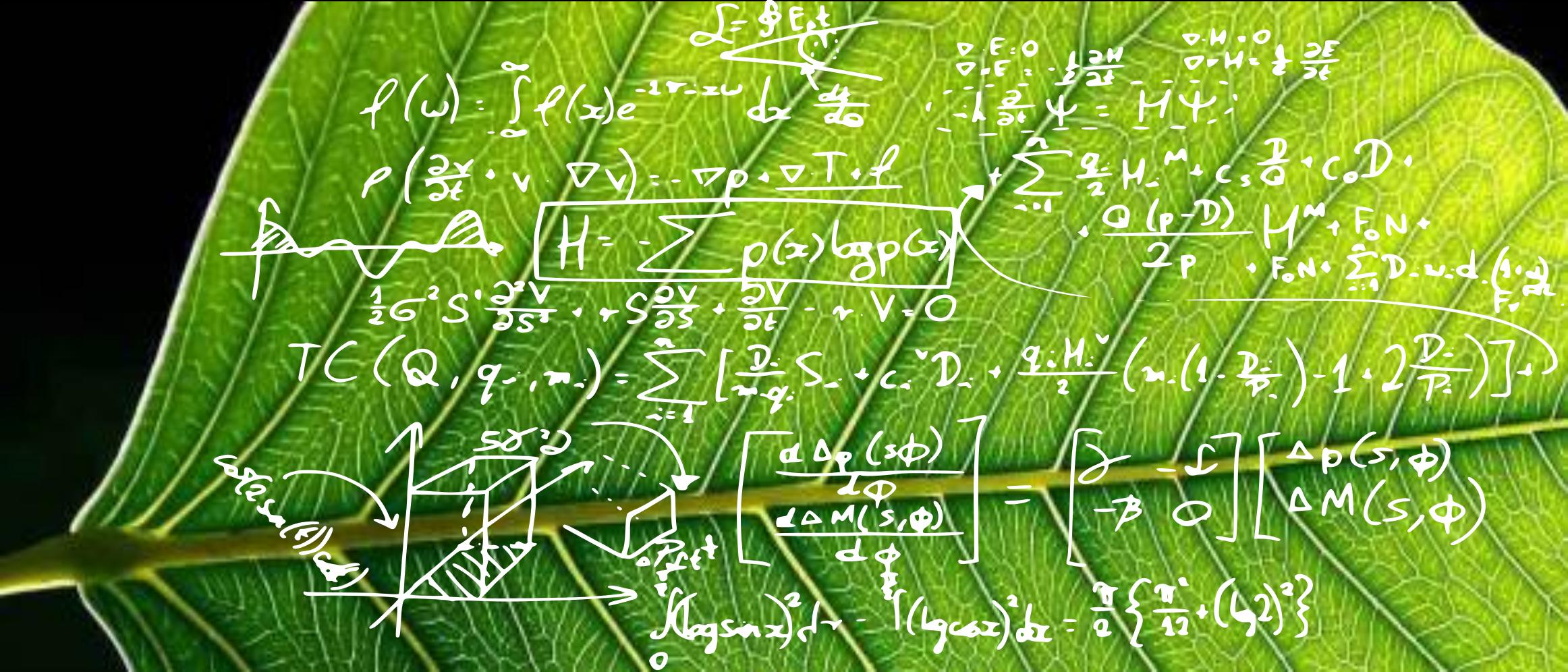En este momento estás viendo Big Data en los estudios de Ecología